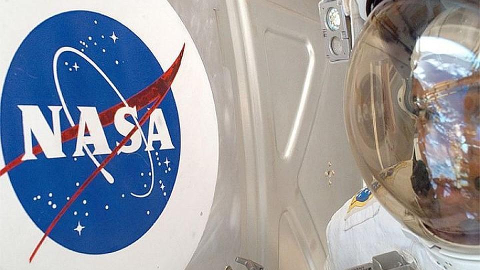 Изображение: Куртки серии «NASA» Alpha Industries