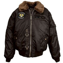 Куртка B-15 55th Anniversary Flight Jacket